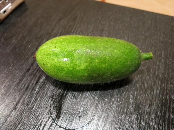 <$MTEntryTitle$>&#8221; /></a></p> <p>具材の中に大きな胡瓜みたいなものが入ってましたが、これは小冬瓜だそうです。<br /> 実物を見せて頂きましたが、手のひらサイズの冬瓜。</p> <p class=
