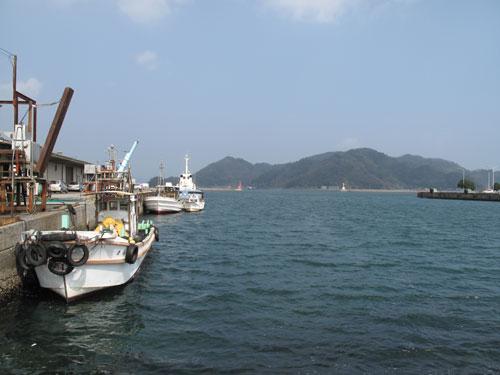 魚料理○海 MARUKAIの海鮮丼:海鮮丼